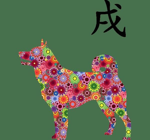 Metalli-Härän vuosi 2021 Koira