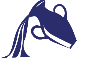 Horoskooppi Vesimies